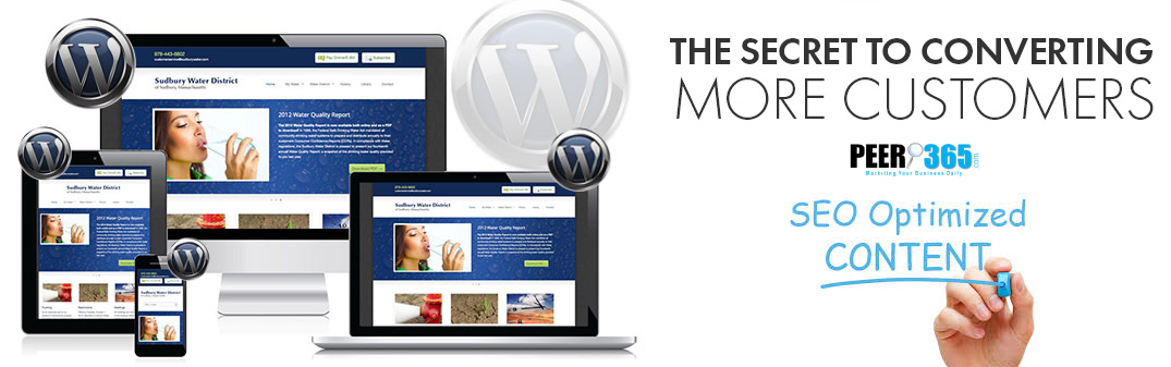 Customized Responsive WordPress Website and SEO Optimized Content